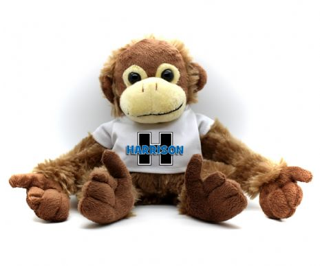 Personalised Monkey Teddy Bear N23 -  'Alphabet Name' in Pink or Blue Text